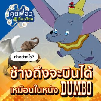 รีวิว คุยเฟื่องเรื่องวิทย์ ทำอย่างไร? ช้างถึงจะบินได้เหมือนในหนังเรื่อง Dumbo