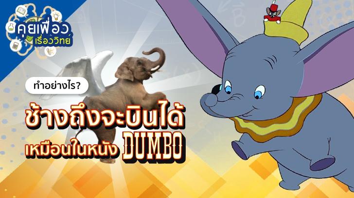 คุยเฟื่องเรื่องวิทย์ ทำอย่างไร? ช้างถึงจะบินได้เหมือนในหนังเรื่อง Dumbo