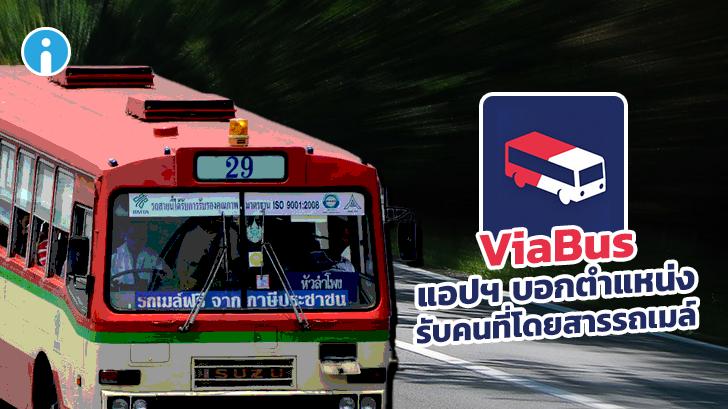รีวิว ViaBus แอปบอกตำแหน่งรถเมล์ แบบ Real-Time มีประโยชน์มากสำหรับคนที่โดยสารรถเมล์